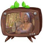 Stibitze im Fernsehen
